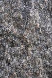 Rockowa struktura Zdjęcia Royalty Free