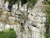 Rockowa struktura w jarze Zdjęcia Stock
