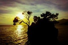 Rockowa wyspa przy zmierzchem w Brela, Chorwacja Zdjęcie Royalty Free