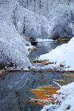 Rockowa zatoczki zima Zdjęcia Royalty Free