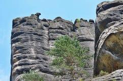 Rockowe formacje, Adrspach-Teplice obywatela rezerwat przyrody Obrazy Royalty Free