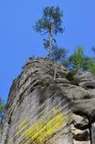 Rockowe formacje, Adrspach-Teplice obywatela rezerwat przyrody Fotografia Royalty Free