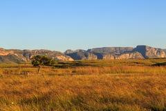 Rockowe formacje przy wschodem słońca w afrykanina krajobrazie Zdjęcie Stock