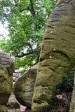 Rockowe formacje przy Wysokimi skałami, Tunbridge studnie, Kent, UK zdjęcie stock