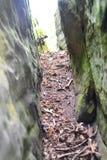 Rockowe formacje przy Wysokimi skałami, Tunbridge studnie, Kent, UK obrazy stock