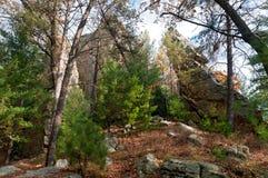 Rockowe iglicy i las przy Petenwell Obrazy Stock