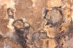 Rockowe tekstury 5 obrazy stock