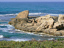 Rockowe warstwy na wybrzeżu Fotografia Stock