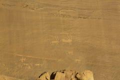 Rockowi cyzelowania na skałach w pustyni Obraz Royalty Free