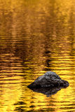 Rockowi i złociści jesieni jeziora odbicia obraz stock