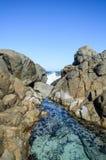 Rockowy basenu zachodniego wybrzeża park narodowy Obraz Royalty Free