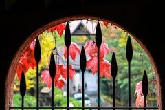 Rockowy okno przegapia jesień sezon Obraz Royalty Free