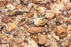 Rockowy piasek Zdjęcie Royalty Free