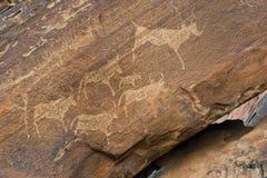 Rockowy rysunek w Twyfelfontein, Namibia Fotografia Royalty Free