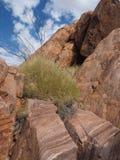 Rockowy szczegół przy skłonami góra Gillen Zdjęcie Stock