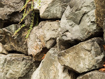 Rockowy weall Zdjęcia Stock