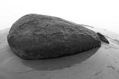 rockowy wieloryb Zdjęcia Royalty Free