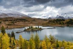 Rockowy Wyspa jezioro na światło słoneczne łąkach w Kanada ` s Banff obywatelu obrazy royalty free