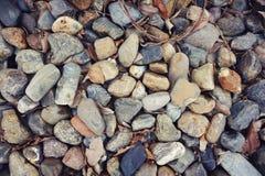 Rockpattern Zdjęcie Royalty Free