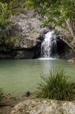 Rockpool chez Kondalilla tombe, hinterland de côte de soleil, austral Photographie stock libre de droits