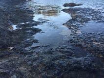 Rockpool sur le bord de la mer Photographie stock libre de droits