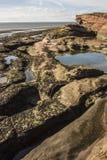 Rockpools och klippa på den Hilbre ön, västra Kirby, Wirral Fotografering för Bildbyråer