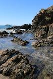 Rockpools på den australiska kusten Arkivbilder