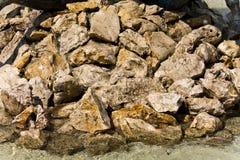 rocks Royaltyfri Fotografi