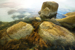 Rocks. A group of rocks in clear water at the beach in Australia Stock Images
