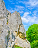 Rocks. Of the Carpathian mountains royalty free stock images