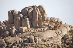 Rocks. On the desert in Africa Stock Photography