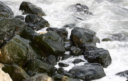 Rocks with algae - RAW format Royalty Free Stock Photos