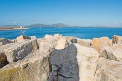 Rocks in Alghero dock Royalty Free Stock Photo