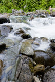 Rocks along the Sol Duc river. Royalty Free Stock Photography