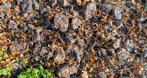 Rocks and autumn dry leaves under wire background Stock Photography