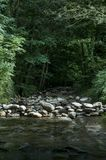 Rocks barrage between a dried out stream in a forest to a streaming river.  stock photo