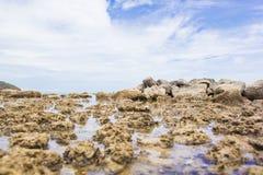 The rocks. On the beach Royalty Free Stock Photos