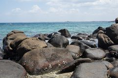 Rocks at the beach of Pigeon Island in Sri Lanka Stock Photography