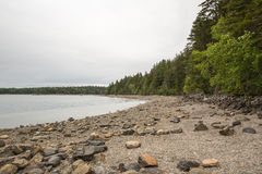 The rocks and beach at Pretty Marsh on Mount Desert in Maine Royalty Free Stock Image