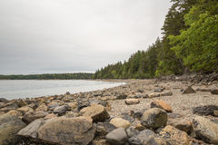 The rocks and beach at Pretty Marsh on Mount Desert in Maine Stock Image