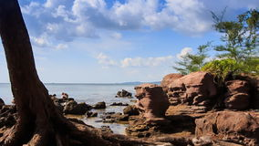 Rocks on Beach with Tree Trunk People at Background. Large rocks on beach with green plant branch and tree trunk people at background against sea sky stock footage