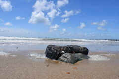 Rocks at the beach. Vlissingen, The Netherlands Royalty Free Stock Images