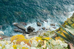 Rocks below at bottom of rocky plant covered cliff Stock Images