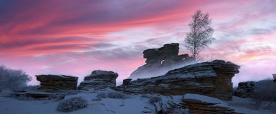 Snow mountains, rocks and birch trees royalty free stock images