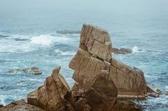 Rocks of the Black Sea Stock Photos