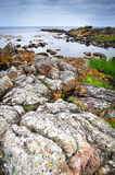 Rocks on Bornholm island, Baltic sea. Rocks in the sea on Bornholm island, Denmark royalty free stock image