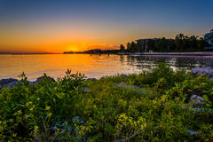 Rocks and bushes on a jetty at sunset, at Smathers Beach, Key We Royalty Free Stock Photos
