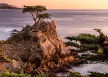 Rocks, Cliff, Hill, Trees, Plant Royalty Free Stock Photos