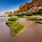 Rocks and Cliffs of Porto de Mos Beach in the Morning, Lagos Stock Images
