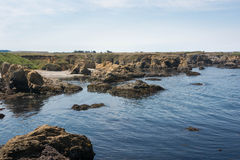 The rocks on the coast in Fort Bragg Royalty Free Stock Photos
